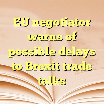 EU negotiator warns of possible delays to Brexit trade talks