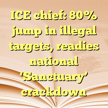 ICE chief: 80% jump in illegal targets, readies national 'Sanctuary' crackdown