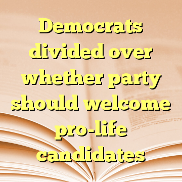 Democrats divided over whether party should welcome pro-life candidates