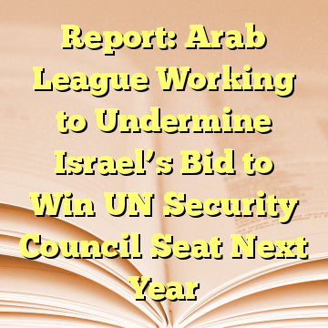 Report: Arab League Working to Undermine Israel's Bid to Win UN Security Council Seat Next Year