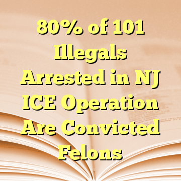 80% of 101 Illegals Arrested in NJ ICE Operation Are Convicted Felons