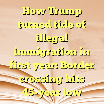 How Trump turned tide of illegal immigration in first year: Border crossing hits 45-year low