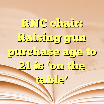 RNC chair: Raising gun purchase age to 21 is 'on the table'