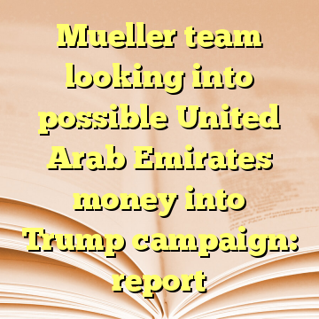 Mueller team looking into possible United Arab Emirates money into Trump campaign: report