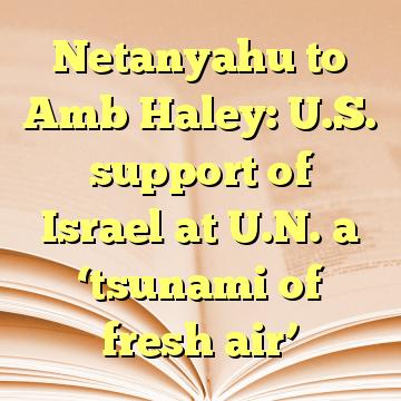 Netanyahu to Amb Haley: U.S. support of Israel at U.N. a 'tsunami of fresh air'