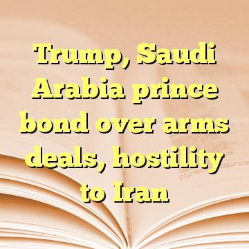 Trump, Saudi Arabia prince bond over arms deals, hostility to Iran