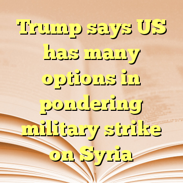 Trump says US has many options in pondering military strike on Syria